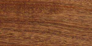West African Sapele